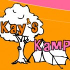 Raymond Lee Band – Benefit Concert for Kay's Kamp and Ashley's Orphans